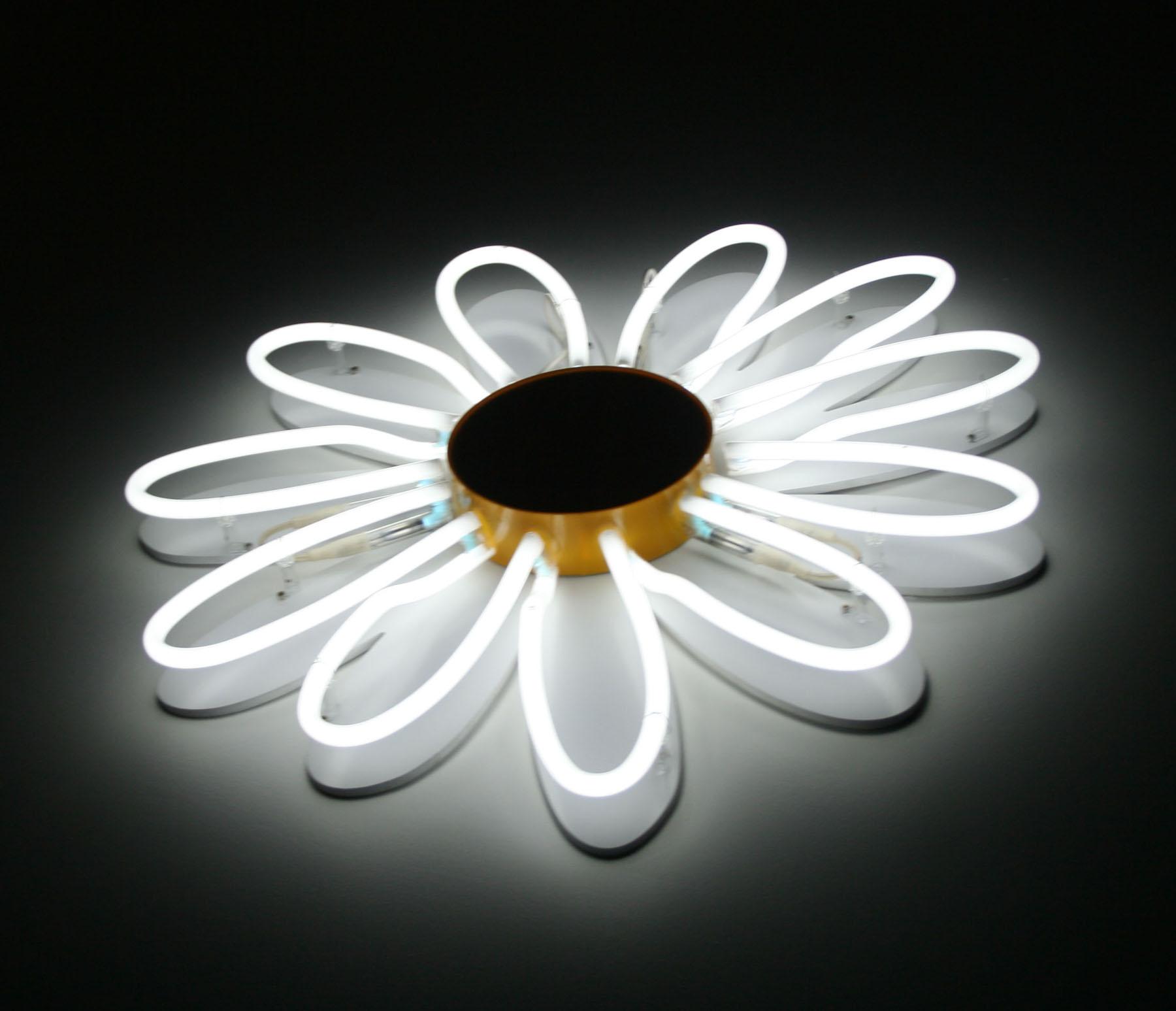 fleur néon